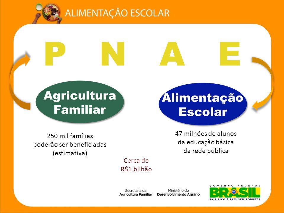 Elaborado pelo agricultor familiar ou por sua organização econômica, de acordo com a Chamada Pública.