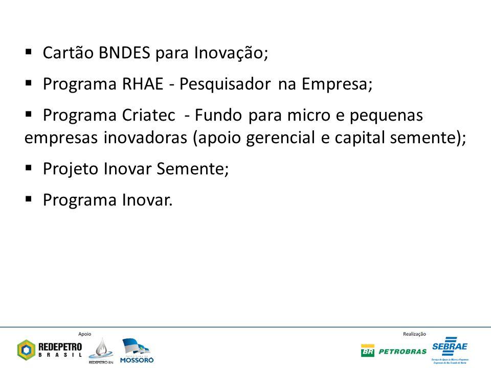 Cartão BNDES para Inovação; Programa RHAE - Pesquisador na Empresa; Programa Criatec - Fundo para micro e pequenas empresas inovadoras (apoio gerencial e capital semente); Projeto Inovar Semente; Programa Inovar.