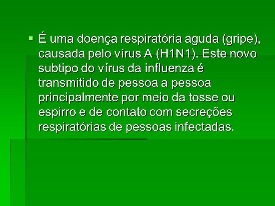 É uma doença respiratória aguda (gripe), causada pelo vírus A (H1N1). Este novo subtipo do vírus da influenza é transmitido de pessoa a pessoa princip