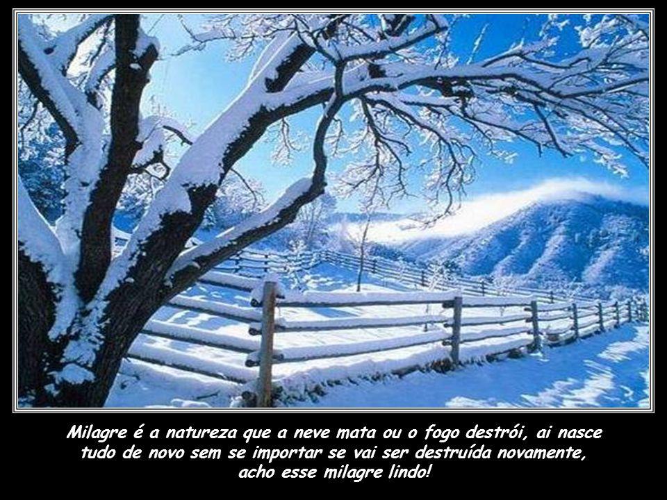 Milagre é ser um doador de órgãos, pois quando Deus chama para voltar para casa, só chama o espírito, e esse chega perfeito, se do corpo ficar algo pa