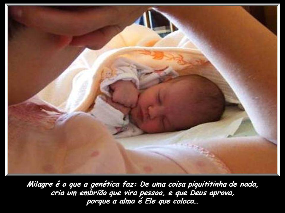 Milagre é o que a genética faz: De uma coisa piquititinha de nada, cria um embrião que vira pessoa, e que Deus aprova, porque a alma é Ele que coloca…