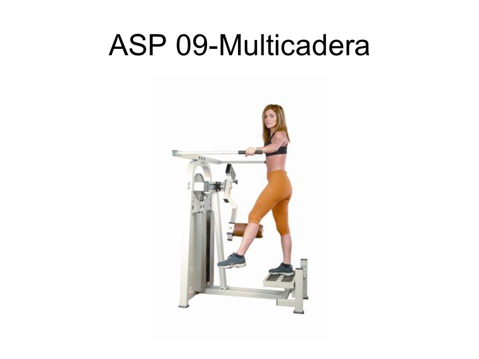ASP 09-Multicadera