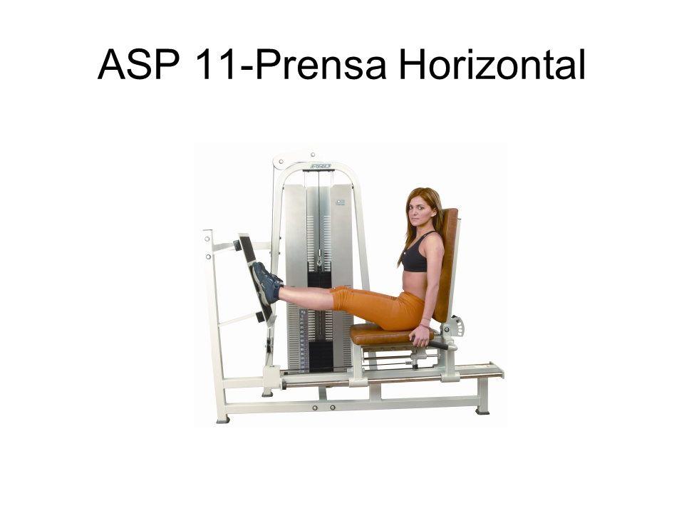 ASP 11-Prensa Horizontal
