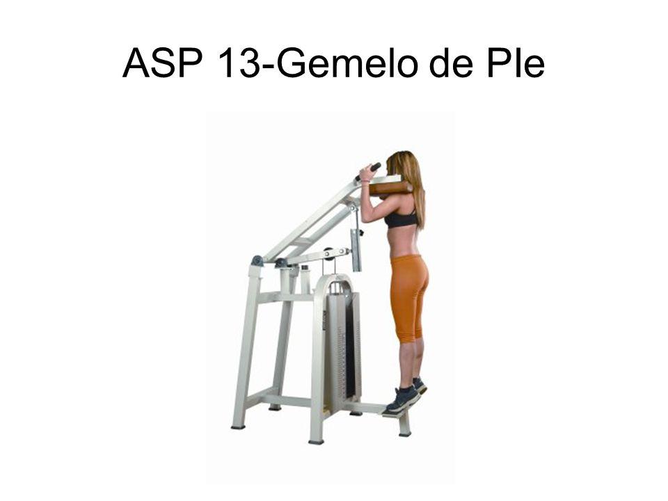 ASP 13-Gemelo de PIe