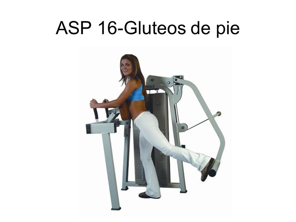 ASP 16-Gluteos de pie