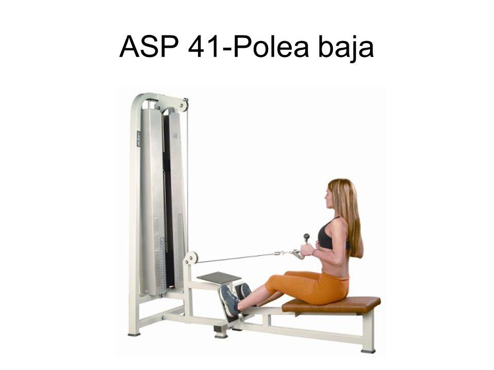 ASP 41-Polea baja