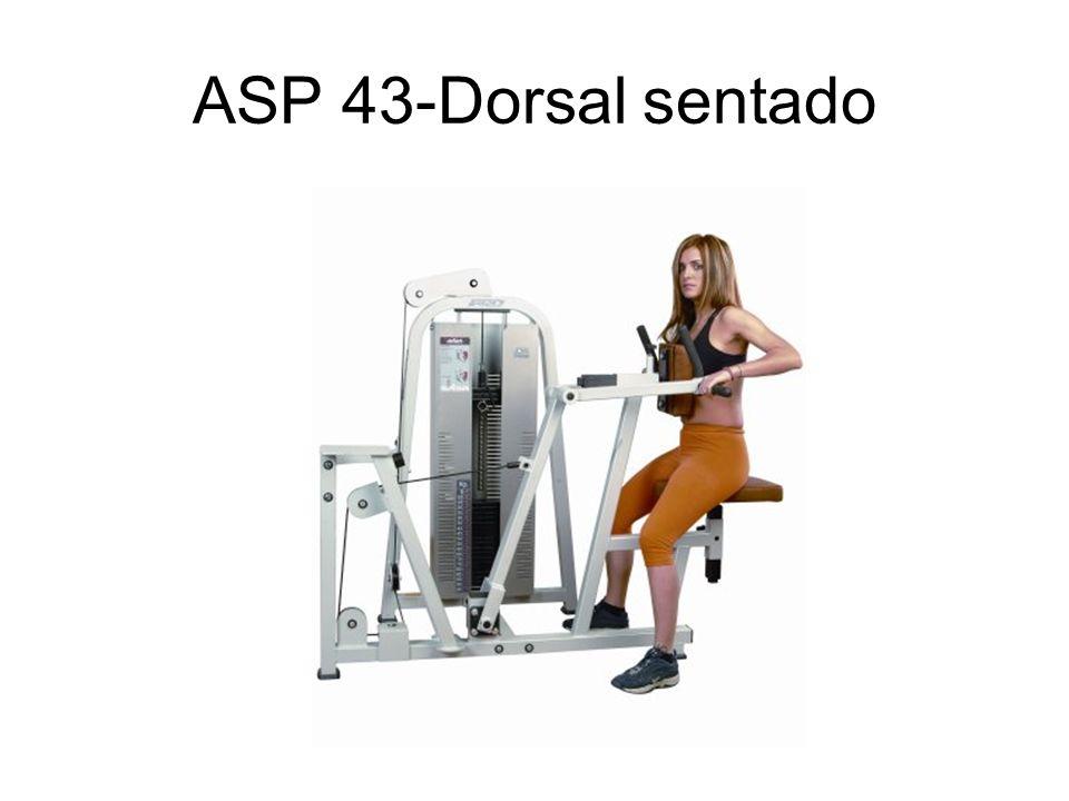 ASP 43-Dorsal sentado