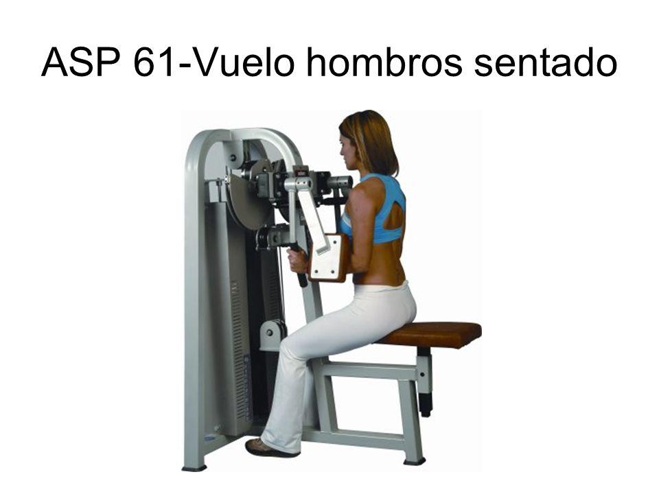 ASP 61-Vuelo hombros sentado