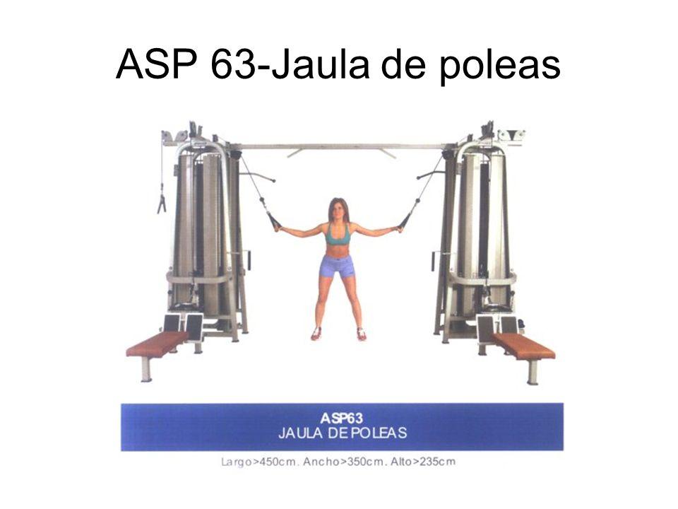 ASP 63-Jaula de poleas