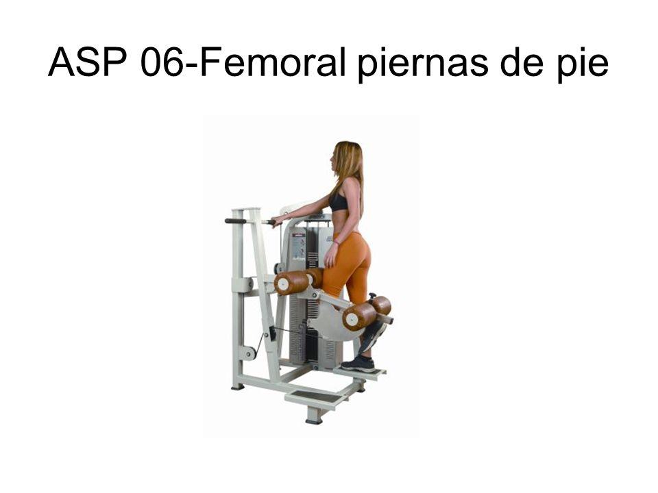 ASP 52-Triceps paralelas