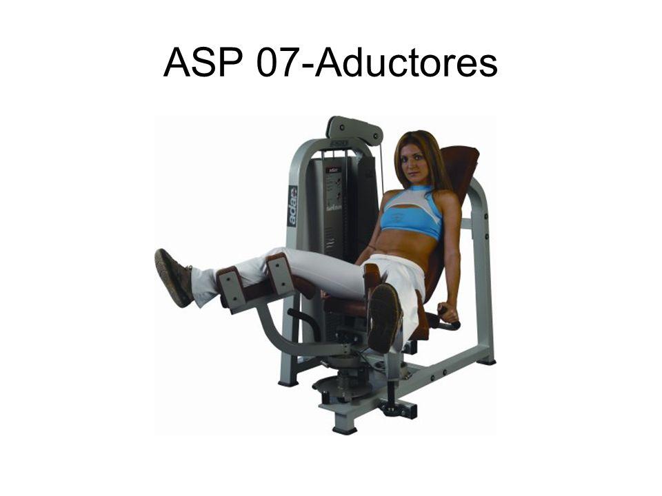 ASP 53-Polea triceps-biceps
