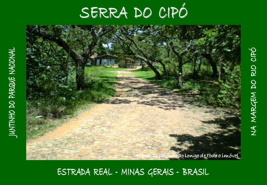 Rio Cipó – na divisa do imóvel – Cachoeira Grande