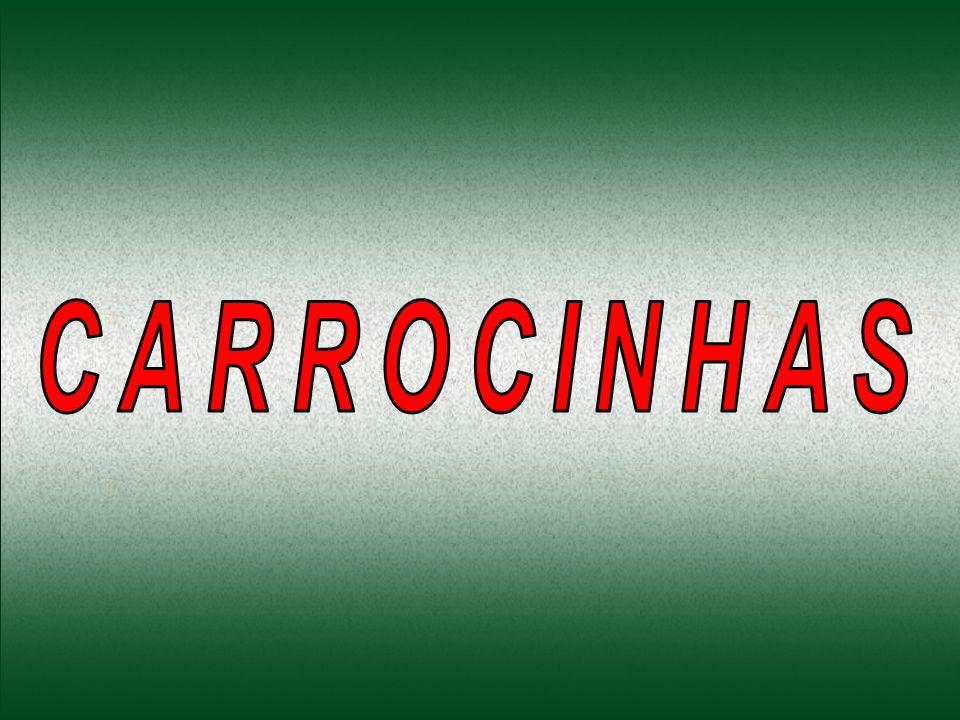 Carrocinha é o nome dado aos veículos que os Centros de Controle de Zoonoses do Brasil, usam para capturar animais errantes.