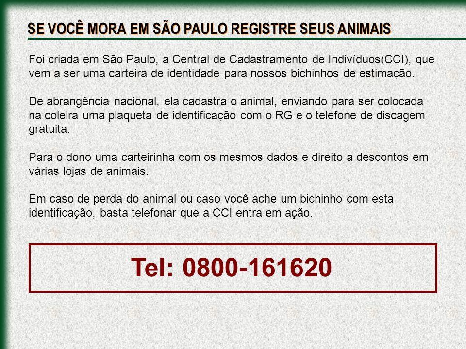 Foi criada em São Paulo, a Central de Cadastramento de Indivíduos(CCI), que vem a ser uma carteira de identidade para nossos bichinhos de estimação. D