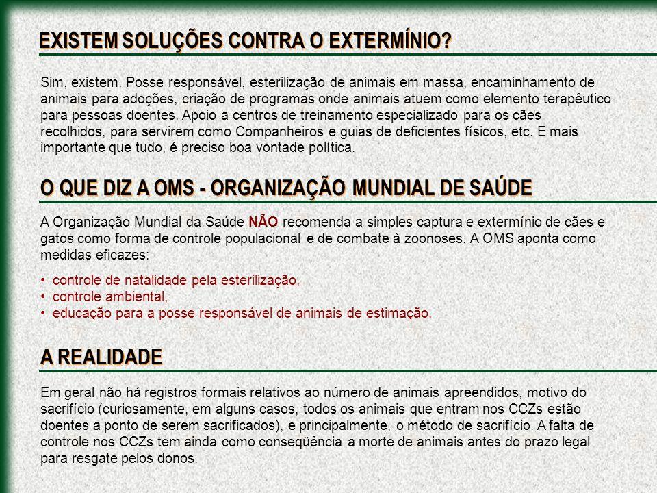 A Cidade de Araçatuba, SP, em 1999 sacrificou mais de 400 animais SADIOS, com a desculpa de estar prevenindo Leishmaniose.