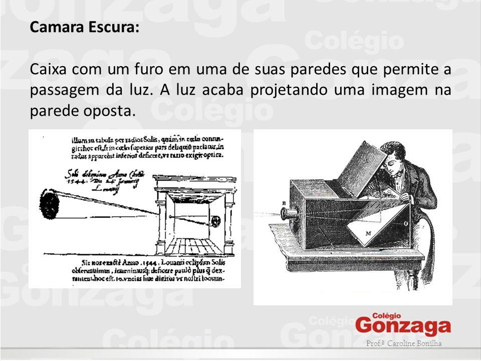 Prof.ª Caroline Bonilha Primeiras experiências fotográficas -Em 1802, Thomas Wedgwood, imprimiu em couro sensibilizado com nitrato de prata a silhueta de folhas e penas.
