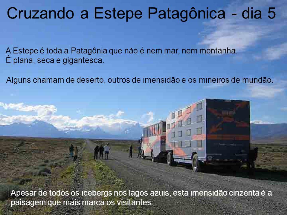 Cruzando a Estepe Patagônica - dia 5 Alguns chamam de deserto, outros de imensidão e os mineiros de mundão. A Estepe é toda a Patagônia que não é nem