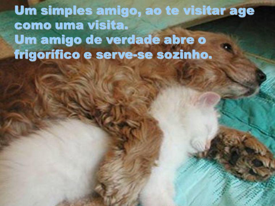 Um simples amigo, ao te visitar age como uma visita.