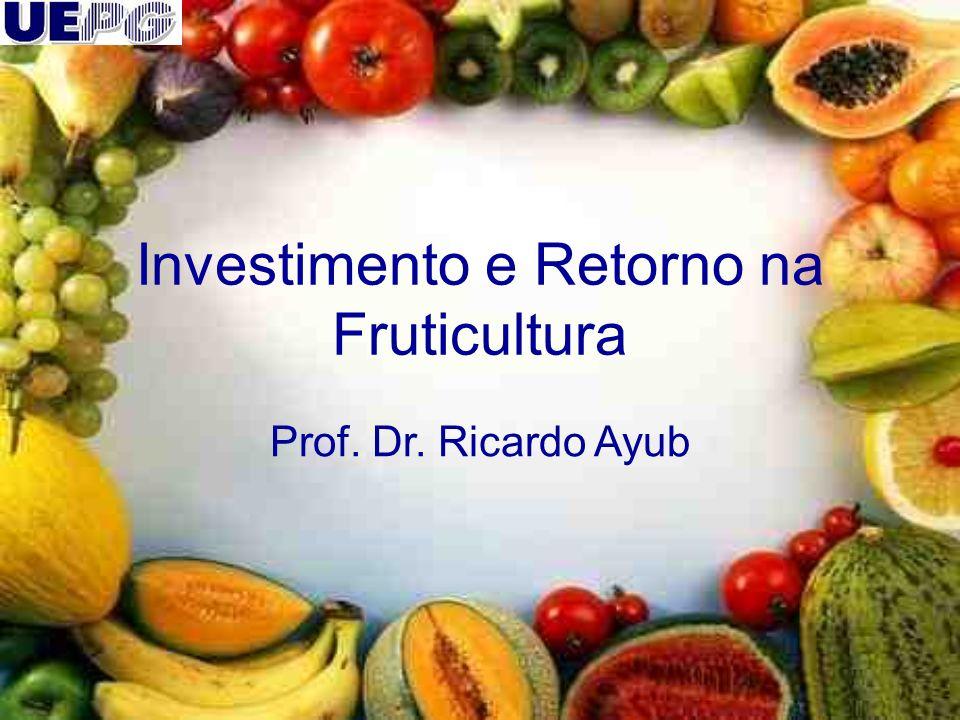 Investimento e Retorno na Fruticultura Prof. Dr. Ricardo Ayub
