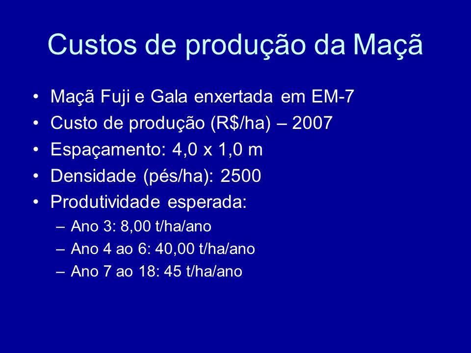 Custos de produção da Maçã Maçã Fuji e Gala enxertada em EM-7 Custo de produção (R$/ha) – 2007 Espaçamento: 4,0 x 1,0 m Densidade (pés/ha): 2500 Produ