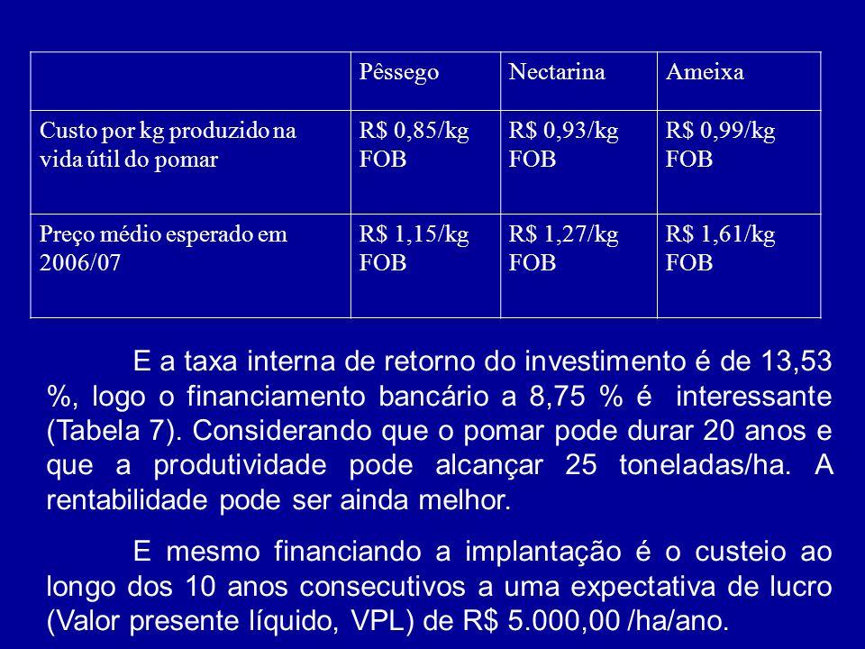 PêssegoNectarinaAmeixa Custo por kg produzido na vida útil do pomar R$ 0,85/kg FOB R$ 0,93/kg FOB R$ 0,99/kg FOB Preço médio esperado em 2006/07 R$ 1,