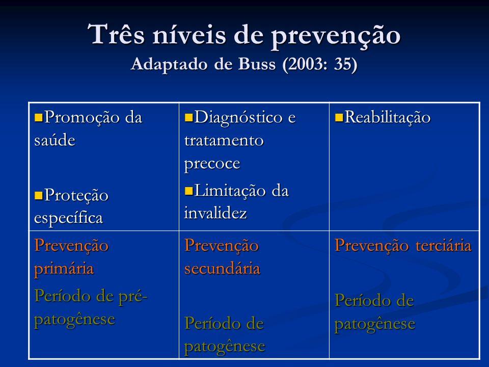 Três níveis de prevenção Adaptado de Buss (2003: 35) Promoção da saúde Promoção da saúde Proteção específica Proteção específica Diagnóstico e tratamento precoce Diagnóstico e tratamento precoce Limitação da invalidez Limitação da invalidez Reabilitação Reabilitação Prevenção primária Período de pré- patogênese Prevenção secundária Período de patogênese Prevenção terciária Período de patogênese