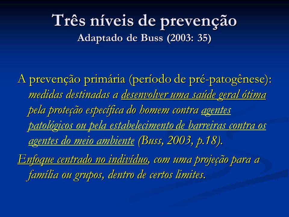 Três níveis de prevenção Adaptado de Buss (2003: 35) A prevenção primária (período de pré-patogênese): medidas destinadas a desenvolver uma saúde geral ótima pela proteção específica do homem contra (Buss, 2003, p.18).