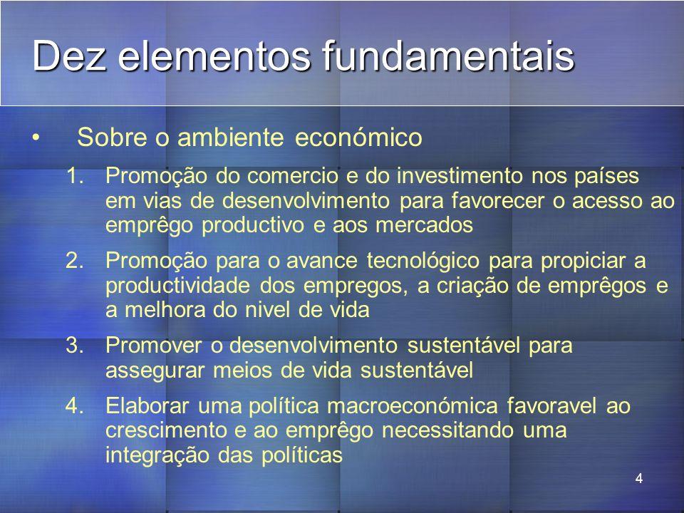 4 Dez elementos fundamentais Sobre o ambiente económico 1.Promoção do comercio e do investimento nos países em vias de desenvolvimento para favorecer o acesso ao emprêgo productivo e aos mercados 2.Promoção para o avance tecnológico para propiciar a productividade dos empregos, a criação de emprêgos e a melhora do nivel de vida 3.Promover o desenvolvimento sustentável para assegurar meios de vida sustentável 4.Elaborar uma política macroeconómica favoravel ao crescimento e ao emprêgo necessitando uma integração das políticas