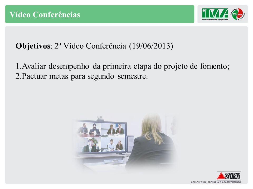 Vídeo Conferências Objetivos: 2ª Vídeo Conferência (19/06/2013) 1.Avaliar desempenho da primeira etapa do projeto de fomento; 2.Pactuar metas para seg