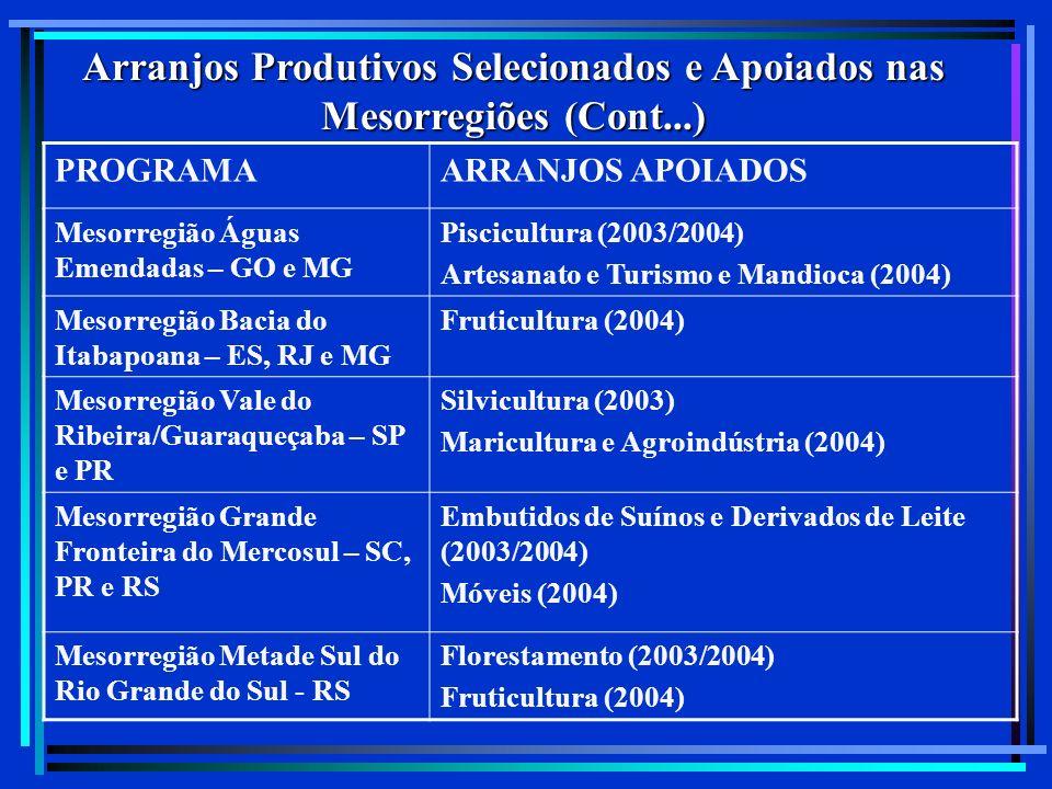 Arranjos Produtivos Selecionados e Apoiados nas Mesorregiões (Cont...) PROGRAMAARRANJOS APOIADOS Mesorregião Águas Emendadas – GO e MG Piscicultura (2003/2004) Artesanato e Turismo e Mandioca (2004) Mesorregião Bacia do Itabapoana – ES, RJ e MG Fruticultura (2004) Mesorregião Vale do Ribeira/Guaraqueçaba – SP e PR Silvicultura (2003) Maricultura e Agroindústria (2004) Mesorregião Grande Fronteira do Mercosul – SC, PR e RS Embutidos de Suínos e Derivados de Leite (2003/2004) Móveis (2004) Mesorregião Metade Sul do Rio Grande do Sul - RS Florestamento (2003/2004) Fruticultura (2004)