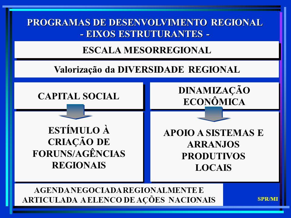 PROGRAMAS DE DESENVOLVIMENTO REGIONAL - EIXOS ESTRUTURANTES - CAPITAL SOCIAL DINAMIZAÇÃO ECONÔMICA ESCALA MESORREGIONAL Valorização da DIVERSIDADE REGIONAL ESTÍMULO À CRIAÇÃO DE FORUNS/AGÊNCIAS REGIONAIS APOIO A SISTEMAS E ARRANJOS PRODUTIVOS LOCAIS AGENDA NEGOCIADA REGIONALMENTE E ARTICULADA A ELENCO DE AÇÕES NACIONAIS SPR/MI