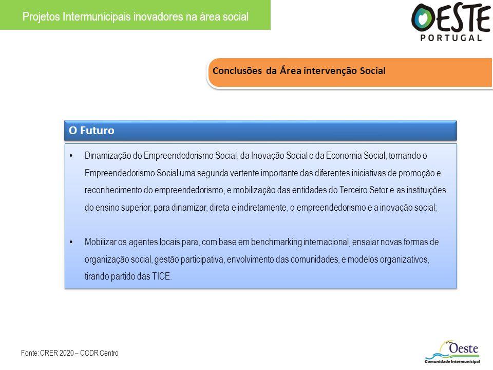 Conclusões da Área intervenção Social Projetos Intermunicipais inovadores na área social O Futuro Dinamização do Empreendedorismo Social, da Inovação