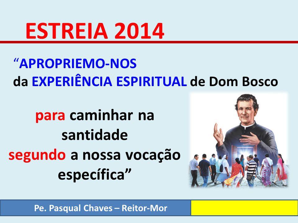 Estreia 2014 – A Espiritualidade Salesiana A Espiritualidade Juvenil Salesiana d) É uma espiritualidade da Comunhão Eclesial ATITUDES E EXPERÊNCIAS: COMPROMISSOS.