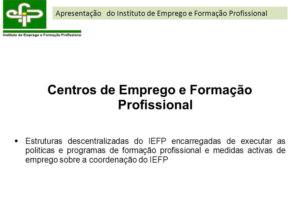 Centros de Emprego e Formação Profissional Estruturas descentralizadas do IEFP encarregadas de executar as politicas e programas de formação profissio