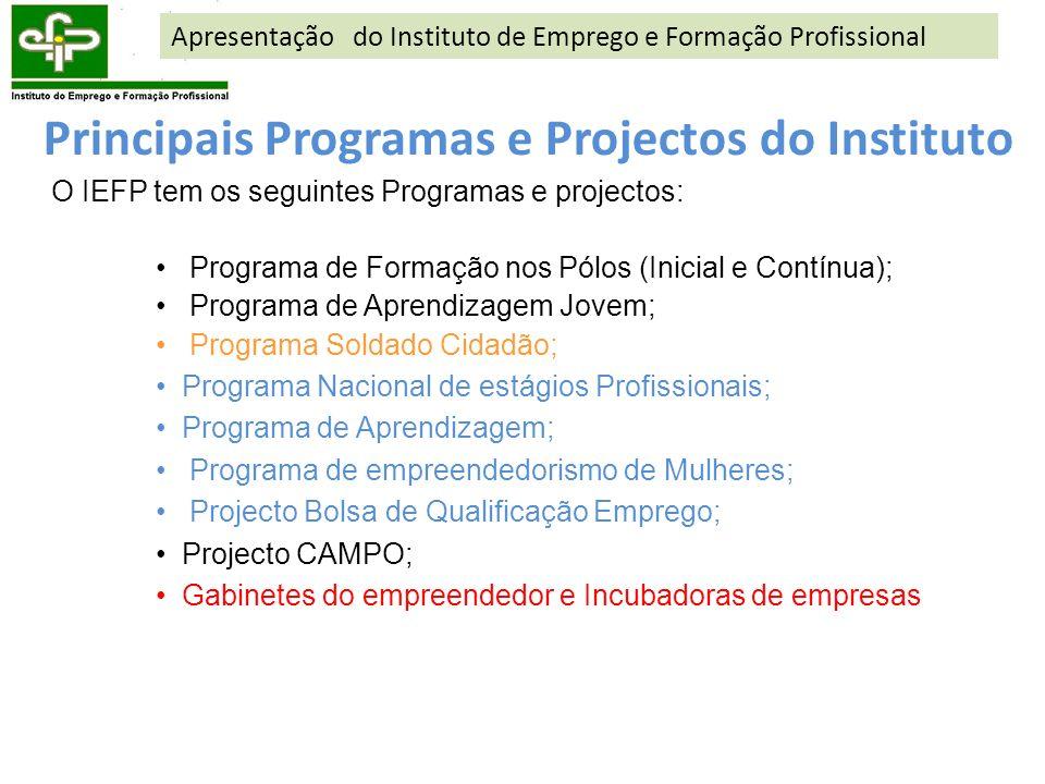 Principais Programas e Projectos do Instituto O IEFP tem os seguintes Programas e projectos: Programa de Formação nos Pólos (Inicial e Contínua); Prog
