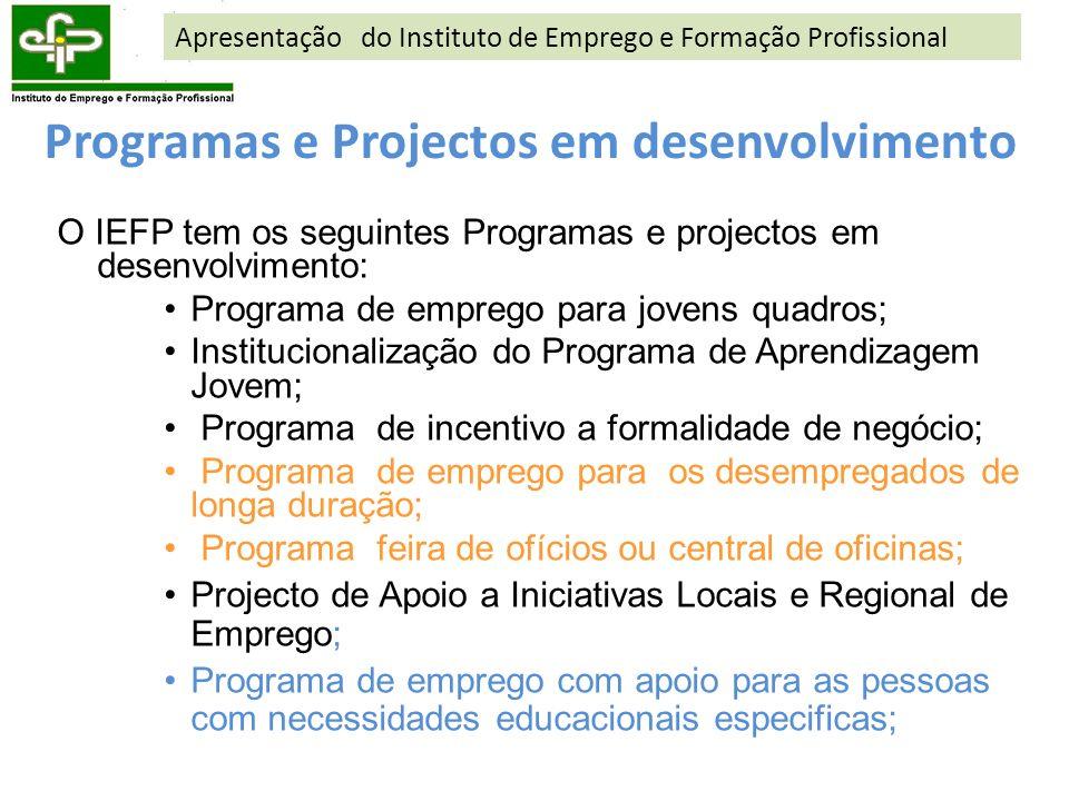Programas e Projectos em desenvolvimento O IEFP tem os seguintes Programas e projectos em desenvolvimento: Programa de emprego para jovens quadros; In