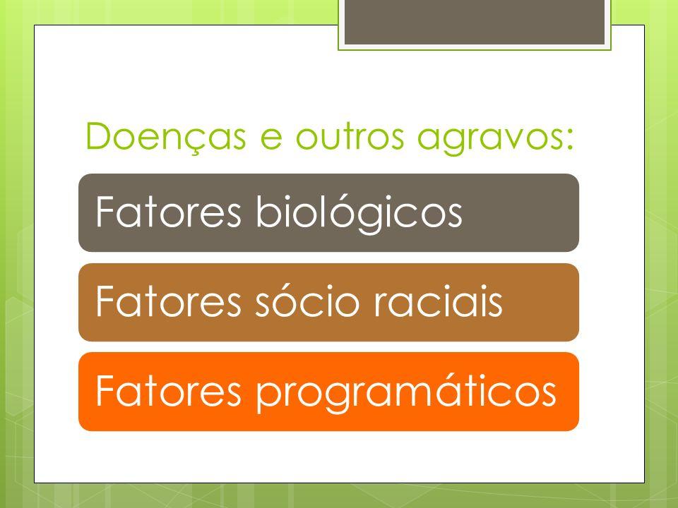 Doenças e outros agravos: Fatores biológicosFatores sócio raciaisFatores programáticos