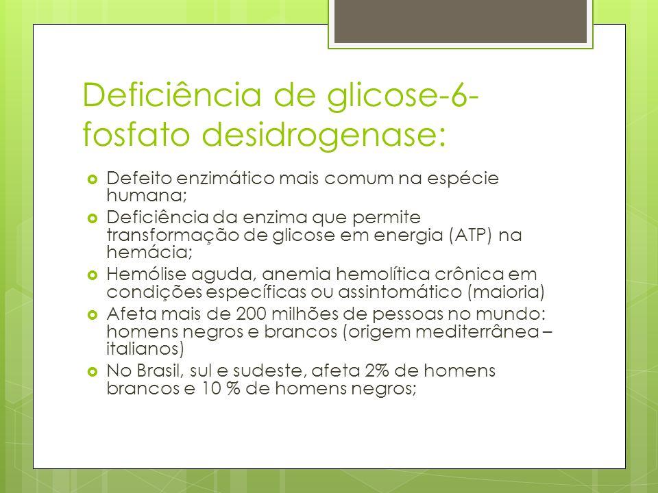 Deficiência de glicose-6- fosfato desidrogenase: Defeito enzimático mais comum na espécie humana; Deficiência da enzima que permite transformação de g