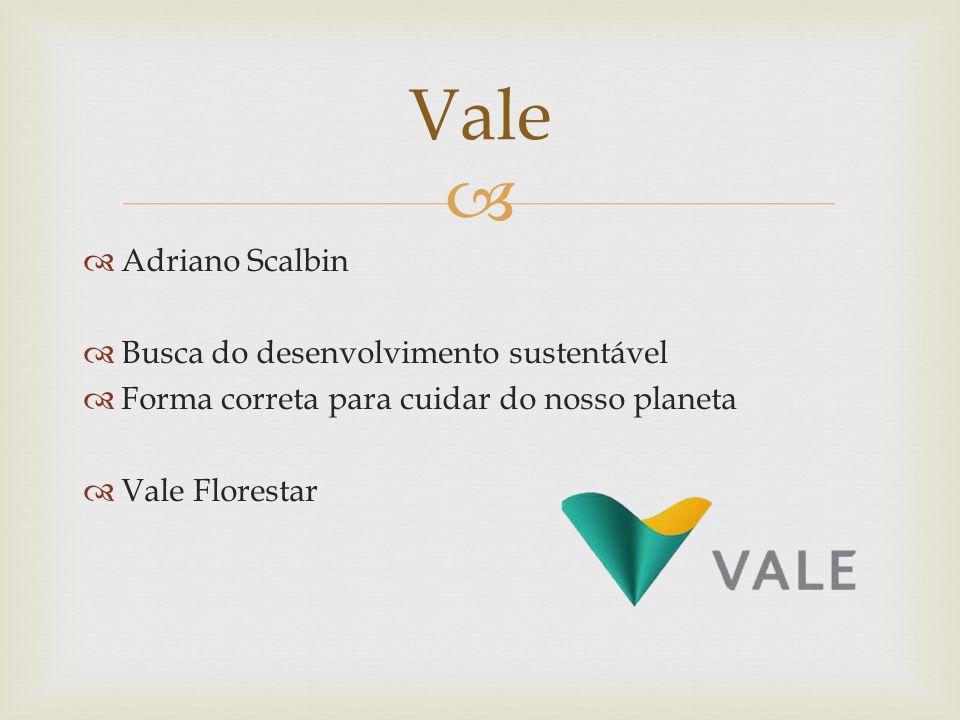 Adriano Scalbin Busca do desenvolvimento sustentável Forma correta para cuidar do nosso planeta Vale Florestar Vale