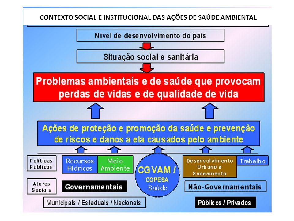 9 CONTEXTO SOCIAL E INSTITUCIONAL DAS AÇÕES DE SAÚDE AMBIENTAL