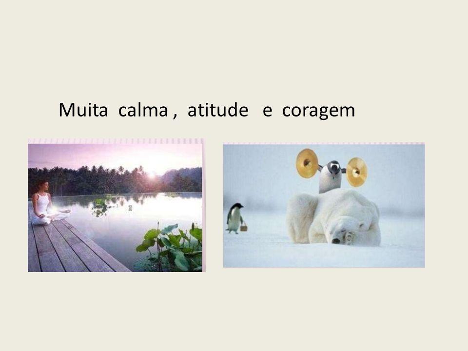 Muita calma, atitude e coragem