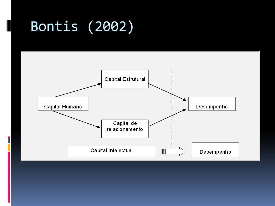 Bontis (2002)