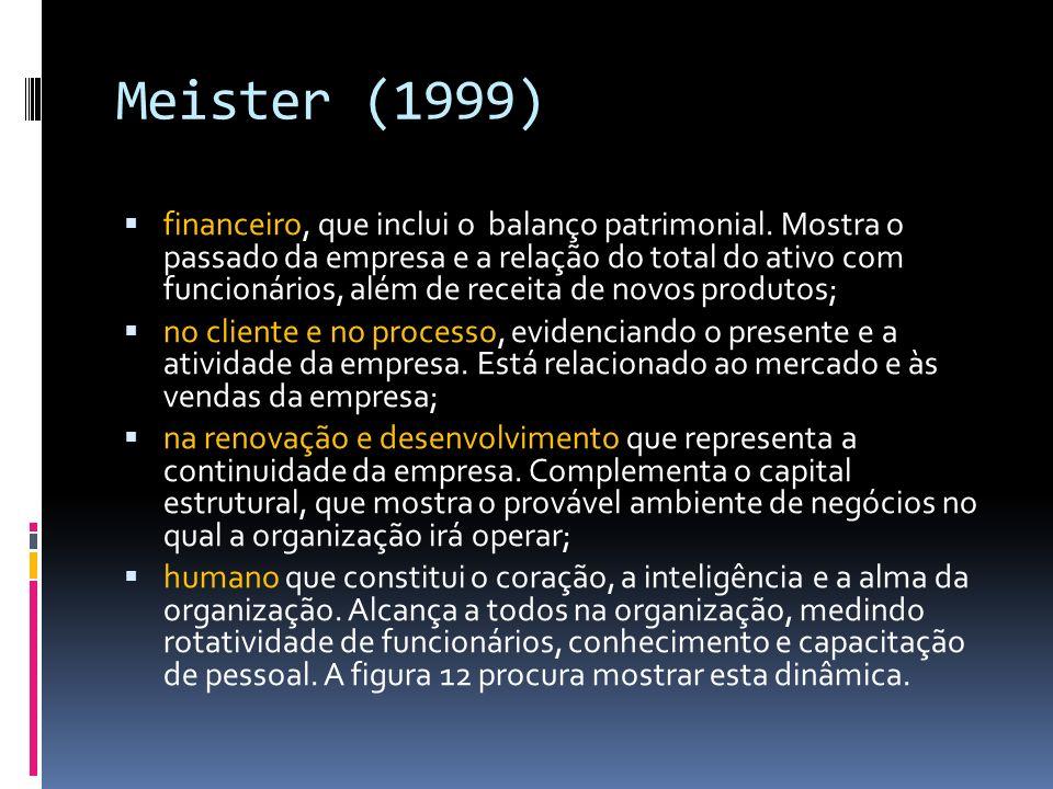 Meister (1999) financeiro, que inclui o balanço patrimonial. Mostra o passado da empresa e a relação do total do ativo com funcionários, além de recei