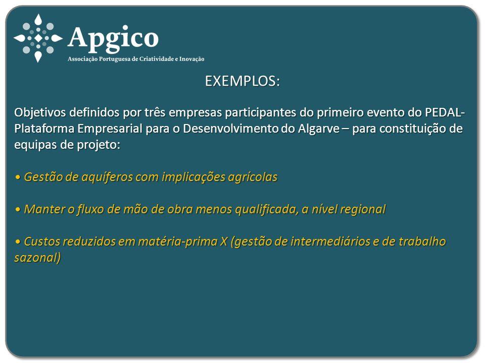 EXEMPLOS: Objetivos definidos por três empresas participantes do primeiro evento do PEDAL- Plataforma Empresarial para o Desenvolvimento do Algarve –