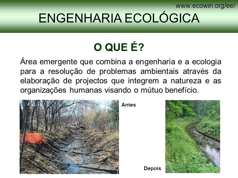 O QUE É? Área emergente que combina a engenharia e a ecologia para a resolução de problemas ambientais através da elaboração de projectos que integrem