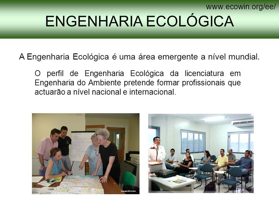 O perfil de Engenharia Ecológica da licenciatura em Engenharia do Ambiente pretende formar profissionais que actuarão a nível nacional e internacional