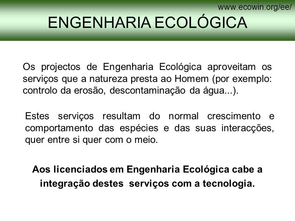 Os projectos de Engenharia Ecológica aproveitam os serviços que a natureza presta ao Homem (por exemplo: controlo da erosão, descontaminação da água..