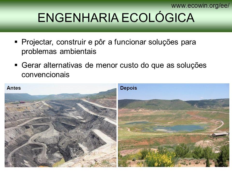 Projectar, construir e pôr a funcionar soluções para problemas ambientais Gerar alternativas de menor custo do que as soluções convencionais AntesDepo