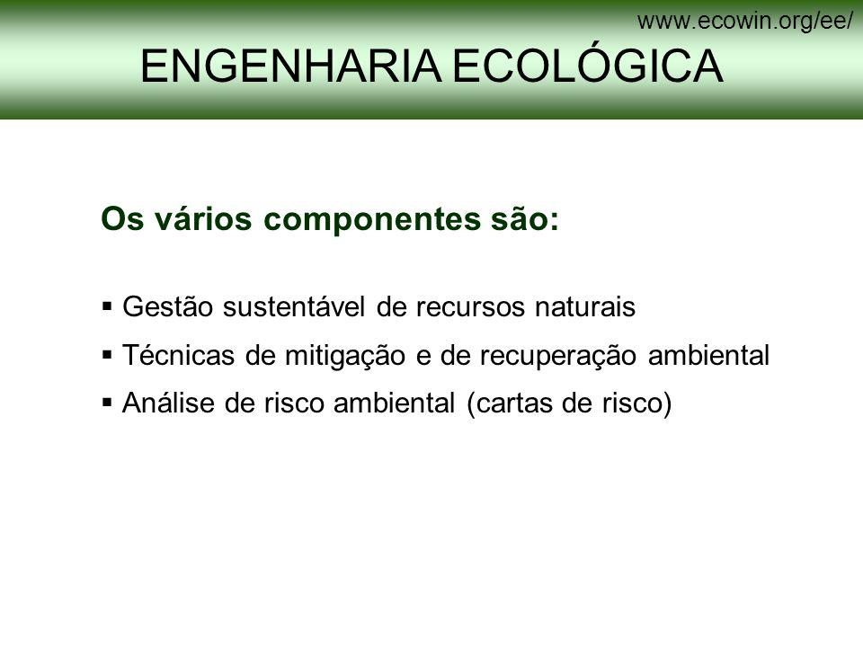 Os vários componentes são: Gestão sustentável de recursos naturais Técnicas de mitigação e de recuperação ambiental Análise de risco ambiental (cartas
