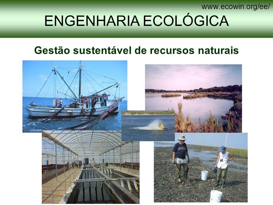Antes Depois Antes Depois ENGENHARIA ECOLÓGICA www.ecowin.org/ee/ Técnicas de mitigação e de recuperação ambiental